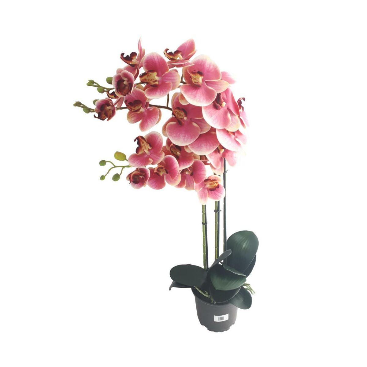 Storczyk Sztuczny W Doniczce 80 Cm Rozowy 3 Pedy Sztuczne Kwiaty W Atrakcyjnej Cenie W Sklepach Leroy Merlin