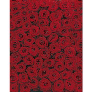 Fotografia ścienna ROSES 270 x 194 cm KOMAR
