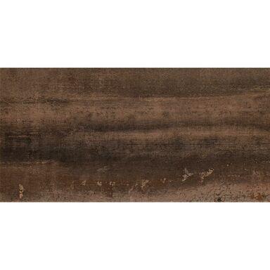 Glazura RAMINA BROWN 29.8 X 59.8 ARTE