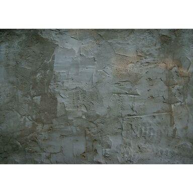 Fototapeta TYNK 254 x 368 cm