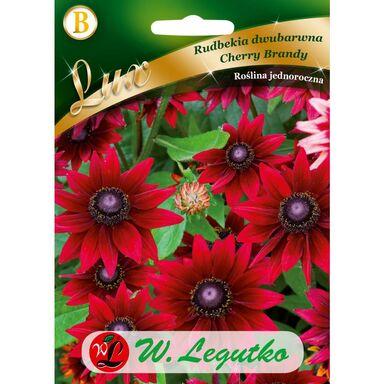 Nasiona kwiatów CHERRY BRANDY Rudbekia dwubarwna W. LEGUTKO