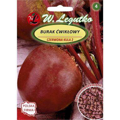 Burak ćwikłowy CZERWONA KULA 2 nasiona zaprawiane 10 g W. LEGUTKO