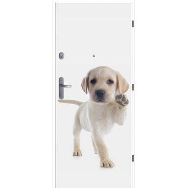 Drzwi wejściowe DEKO 07 / WX-10 LOXA