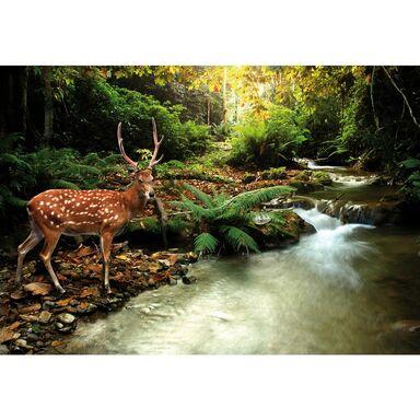 Fototapeta Deer 104 x 70 cm