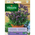 Lawenda lekarska nasiona tradycyjne 0.2 g VILMORIN