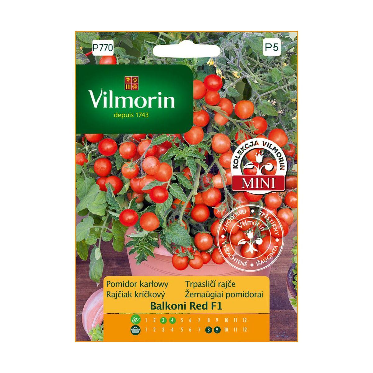 Pomidor karłowy BALCONI RED MIESZANIEC F1 nasiona tradycyjne 0.1 g VILMORIN