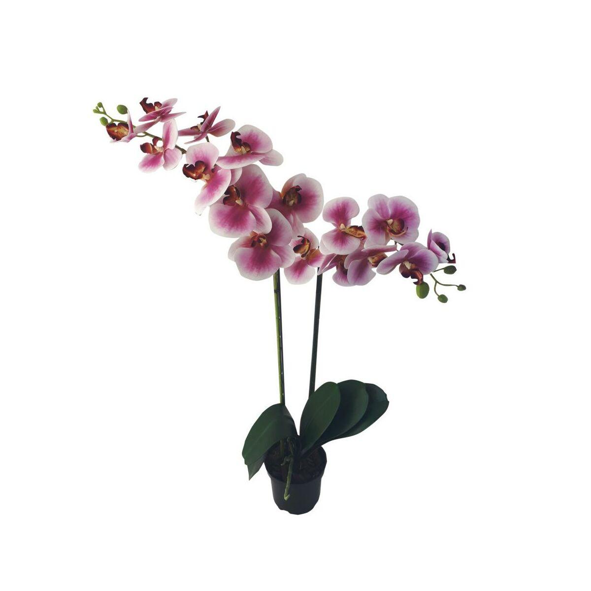 Storczyk Sztuczny W Doniczce 80 Cm 2 Pedy Sztuczne Kwiaty W Atrakcyjnej Cenie W Sklepach Leroy Merlin