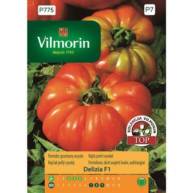 Nasiona warzyw DELIZIA F1 Pomidor gruntowy wysoki VILMORIN