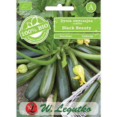 Dynia zwyczajna (Cukinia) BLACK BEAUTY BIO nasiona ekologiczne 2 g W. LEGUTKO
