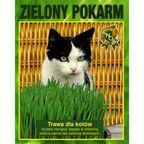 Trawa dla kotów ZIELONY POKARM nasiona tradycyjne 25 g