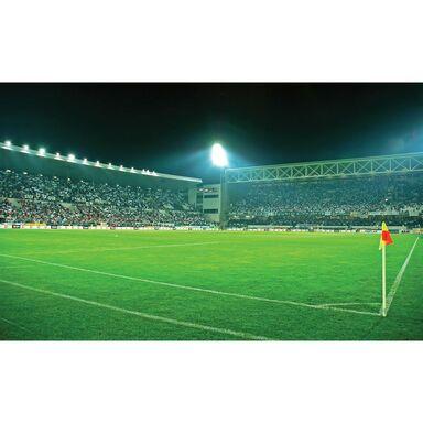 Fototapeta STADION 104 x 70 cm