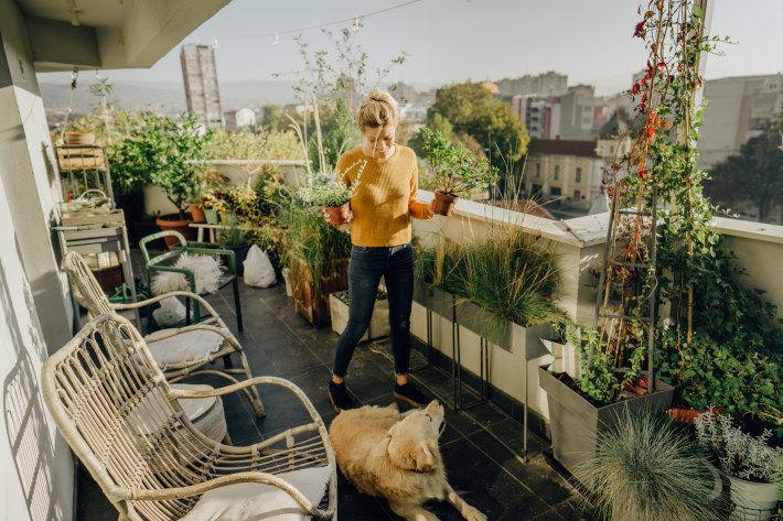 Kobieta z psem na balkonie z roślinami doniczkowymi