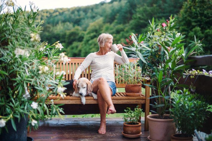 Starsza pani na ogródku z psem