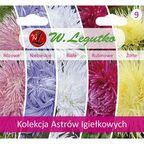 Astry Igiełkowe kolekcja nasion tradycyjnych W.LEGUTKO