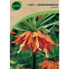 Szachownica cesarska AURORA 1 szt. cebulki kwiatów GEOLIA