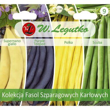 Fasola kolekcja nasion tradycyjnych W. LEGUTKO