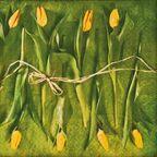 Serwetki Fresh tulips 33 x 33 cm 20 szt.