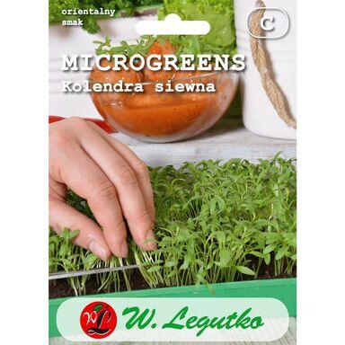 Kolendra siewna microgreens W. LEGUTKO