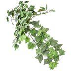 Sztuczna roślina BLUSZCZ 65 cm HANMAR