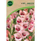 Cebulki kwiatów WINE AND ROSES Mieczyk 6szt. GEOLIA