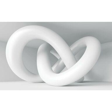 Fototapeta WĘZEŁ 368 x 254 cm