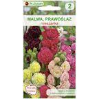 Malwa (Prawoślaz) MIESZANKA nasiona tradycyjne 0.8 g W. LEGUTKO