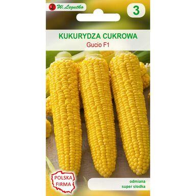 Nasiona warzyw GUCIO  F1 Kukurydza cukrowa W. LEGUTKO