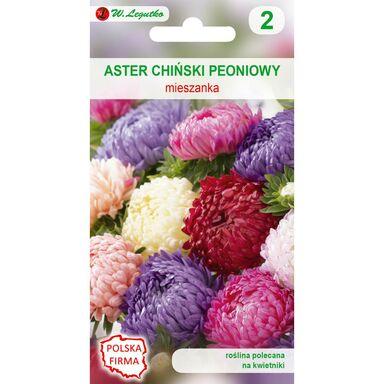 Nasiona kwiatów MIESZANKA Aster chiński peoniowy W. LEGUTKO