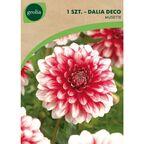 Cebulki kwiatów RED EMPIRE Dalia dekoracyjna 1szt. GEOLIA