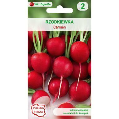 Rzodkiewka CARMEN nasiona tradycyjne 10 g W. LEGUTKO