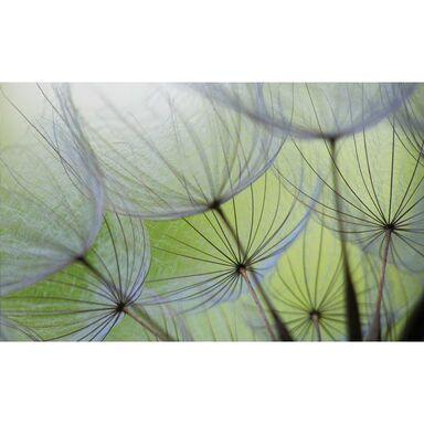 Fototapeta DMUCHAWIEC 146 x 208 cm