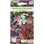 Werbena ogrodowa MIESZANKA nasiona tradycyjne 0.5 g W. LEGUTKO