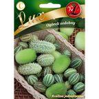Ogórek ozdobny MIESZANKA GATUNKÓW nasiona tradycyjne 0.3 g W. LEGUTKO