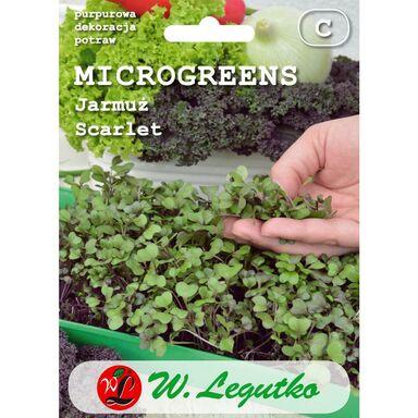 Jarmuż SCARLET microgreens W. LEGUTKO