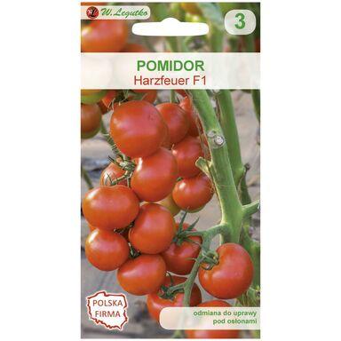 Pomidor pod osłony HARZFEUER F1 W. LEGUTKO