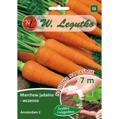 Marchew AMSTERDAM 2 nasiona na taśmie 7 m W. LEGUTKO