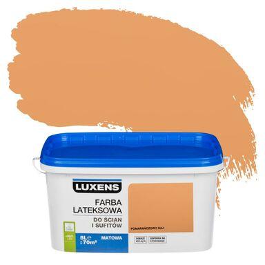 Farba wewnętrzna do ścian i sufitów EMULSJA 5 l Pomarańczowy gaj LUXENS