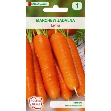 Marchew LENKA nasiona tradycyjne 5 g W. LEGUTKO