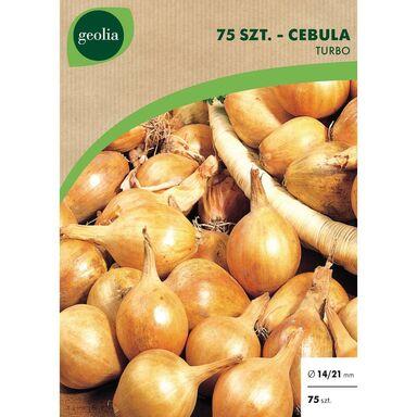 Cebulki warzyw TURBO Cebula 75szt. GEOLIA