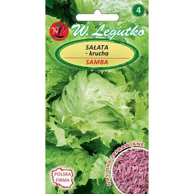 Sałata głowiasta krucha SAMBA nasiona zaprawiane 1 g W. LEGUTKO