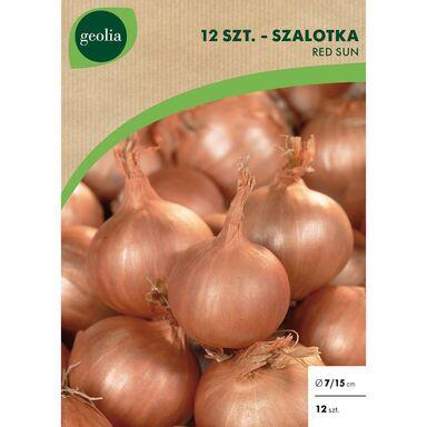 Cebulki warzyw RED SUN Szalotka 12szt. GEOLIA