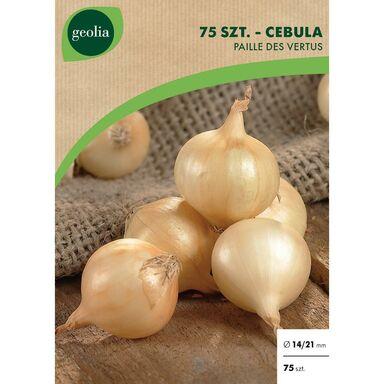 Cebulki warzyw JEAUNE PAILLE Cebula 75szt. GEOLIA