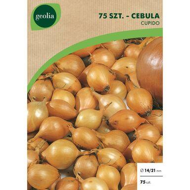 Cebulki warzyw CUPIDO Cebula 75szt. GEOLIA