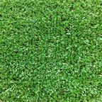 Sztuczna trawa na mb MARIO 4 m