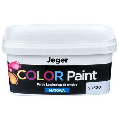 Farba dekoracyjna COLOR PAINT 1 l S0520 Lateksowa matowa JEGER