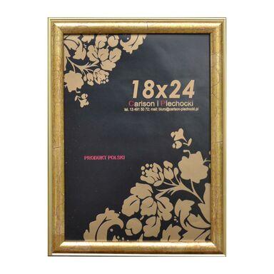 Rama RÓŻA 18 x 24 cm