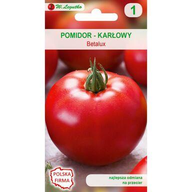 Pomidor gruntowy karłowy BETALUX nasiona tradycyjne 0.5 g W. LEGUTKO
