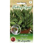 Szałwia lekarska nasiona tradycyjne 1 g W. LEGUTKO