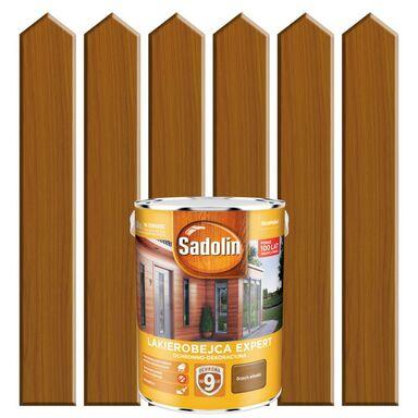 Lakierobejca do drewna EXPERT 5 l Orzech włoski SADOLIN