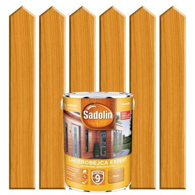 Lakierobejca do drewna EXPERT 5 l  Piniowy SADOLIN